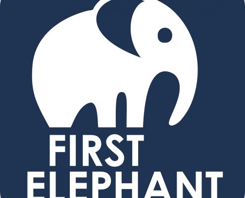 First Elephant Self Storage Logo
